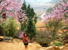 Sapa 2 Days 1 Night From Hanoi - Overnight in Ta Van Village Tour