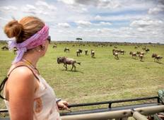 Migration  Lodge Safari Tarangire ,Serengeti & Ngorongoro Crater  Tour