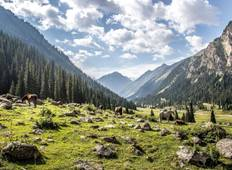 Kyrgyzstan 5 Day Tour with Osh, Bishkek, and Issyk Kul Tour