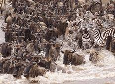 3 Days, 2 Nights Safari to tsavo National park from Nairobi Tour