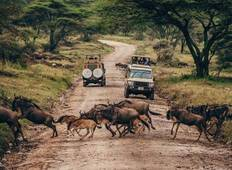 3 days tarangire, Ngorongoro crater & lake manyara parks group tour Tour