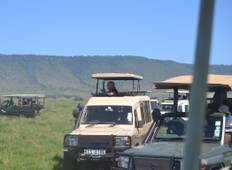 13 Days Kenya and Tanzania Small Group  4x4 Camping  Safari Tour
