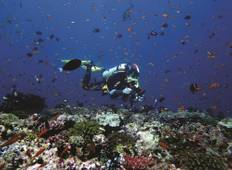 Maldives 5 Nights 8 Dives Package Tour