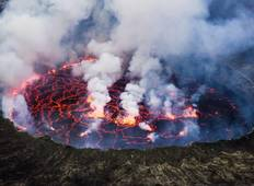The Virunga Gorillas of Congo & The Nyiragongo Hike Tour (4 Days / 3 Nights) Tour