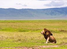 3 Days: Safari to Lake Manyara, Ngorogoro Crater, Tarangire National Park Tour