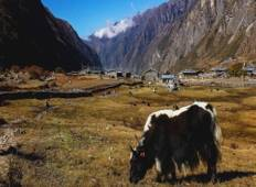 7 Days Tamang Heritage Trek Tour