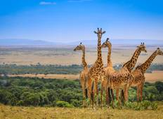 10 Days Serengeti - Masai Mara Half Accommodated (Half Camping & Half Lodges/Hotel/Tented Camps) Tour