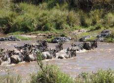 5 Days Masai Mara Wildlife Safari Tour