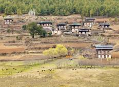Country Vacation - Bhutan Scenic Tour Tour