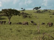Four Days Murchison Falls National Park Tour