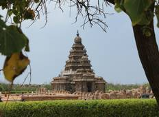Chennai to Pondicherry Thanjore & Trichy (5 Day Tour) Tour