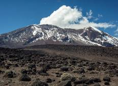 Mount Kilimanjaro Expedition (Lemosho Route) - 8 Days Tour
