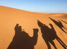 History and Sand - Fes, Sahara, and Marrakech Tour