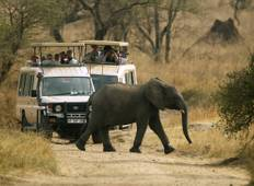Lodge Safari (2 days on the trek) international group departure Tour