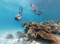 Great Barrier Reef 3-Day Tour (from Brisbane) Tour