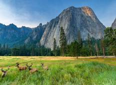 Golden California National Parks Tour - Start Los Angeles Rundreise