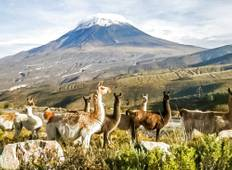 Arequipa Adventure Tour