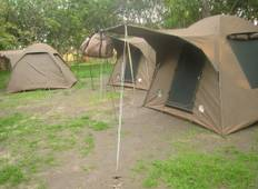 4 DAYS CAMPING SAFARI Tour