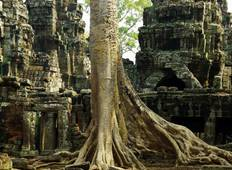 Discover Cambodian treasure Tour