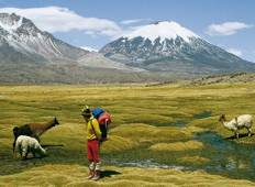 4 Days Unique Experience @ Chilean high Plateau (Chilean Altiplano) Tour