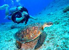 Scuba Dive Certificate + Luxury Relaxation PADI OPEN WATER Tour