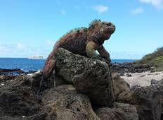 Peru and Galapagos Explorer Tour