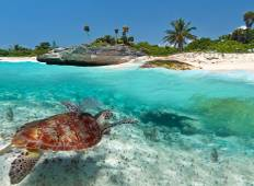 Magic Mexico with 4 Days Beach Extension Tour