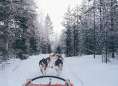 Lapland Family Explorer - 5 Days Tour