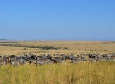 Best of Kenya 9 days Tour
