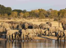 Best of Zimbabwe Experience 6 Days 5 Nights (Comfort Plus) Tour