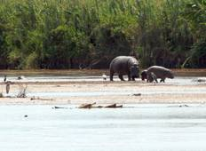 Burundian Adventure Safari 7D /6 N (Comfort Plus) Tour