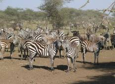 3 Days /2 Nights Masai Mara via The Great Rift Valley (Luxury) Tour