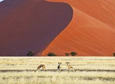 Namibia Untouched Tour