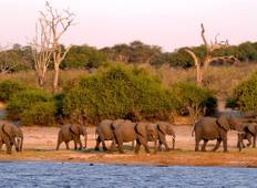 Southern Africa Discovery 11 Days (7 destinations) Tour