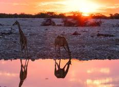 Ultimate African Expedition Tour