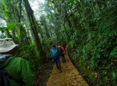 Costa Rica: Monteverde and La Fortuna Tour