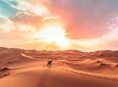 6 Day through many intersting deserts adventurs from Ouarzazate Tour