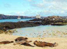 Galapagos Island Hopping Adventure 7D/6N Tour