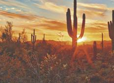 Desert Escapes of California & Arizona - end Tuscon, 2020 Tour