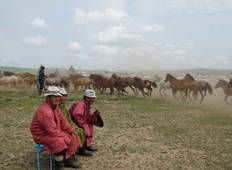 7 Days Gobi Desert Adventure in Mongolia, Max 6 Guests Tour