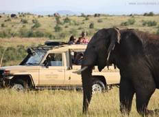 4 Day Amboseli National Park Safari Tour
