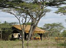 6 Day Budget Safari Lake Manyara / Serengeti Plains / Ngorogoro Crater / Tarangire Tour