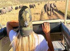 4 Days Camping Safari To Manyara,Serengeti and Ngorongoro. Tour