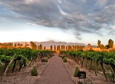 Mendoza, Land of Sun & Good Wine - 4 days  Tour