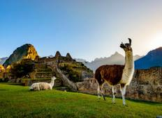 7 Days Peru Highlights  Tour