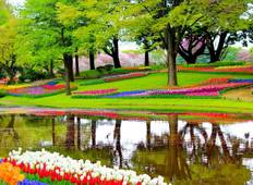 Tulip Time in Holland & Belgium with 1 Night Amsterdam Tour