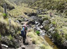 6 Days Mount Kenya Hike- Chogoria Route Down Naro Moru  Tour
