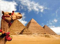 Egyptian Explorer - 8 days Tour