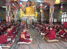 Dharamsala- Transfers+Hotel+Sightseeing Tour