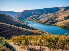 Semi-Private Porto, Douro Valley & Lisbon Tour